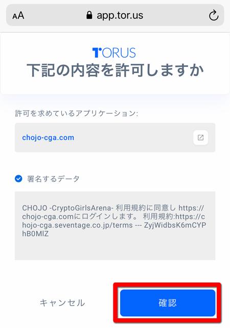 トーラスへのアクセス許可 - CHOJO攻略